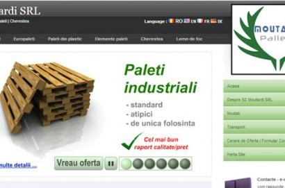 europaleti din lemn
