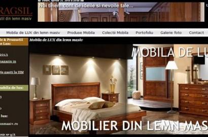 mobilier lemn masiv